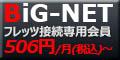 bignet_banner120x60